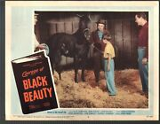 Courage Of Black Beauty-lobby Card-6-1957-johnny Crawford-mimi Gibson