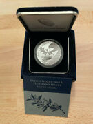 End Of World War Ii 75th Anniversary Silver Medal - Ships Today