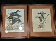 John Ruthven Matching Framed Duck Printsteals And Canvasbackssigned And 'd