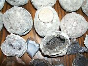 10 Pound Lbs Of Break Your Own Las Choyas Coconut 95 Hollow Geodes Per Lot.