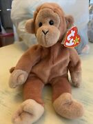 Rare Ty 1995 Bongo Beanie Baby Style 4067 P.v.c Errors On Narrow Facetags.