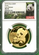 Panda Gold China 2019 500 Yuan 30 Gram Ngc Ms 70 Early Releases