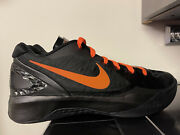 Nike Zoom Hyperdunk 2011 Low - Linsanity Edition Size 10