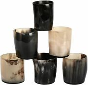 Small Authentic 3.5oz Viking Drinking Horn Set Of 6 Shot Glass Cup 2.5in Approx