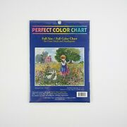 Backyard Geese Perfect Color Chart Counted Cross Stitch Needlepoint New