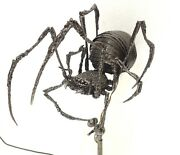 Spider Lamp Realistic Recycled Metal Art Sculpture By Favaro Signed Certificate