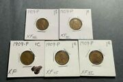 Lot Of 5 1909-p Lincoln Wheat Cent Penny Xf - Extremely Fine Old U.s. Coins