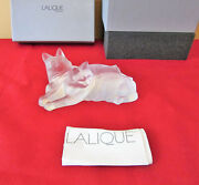 New In Box Lalique Crystal Happy And Heggie Cat Figurine 2 Cats Together