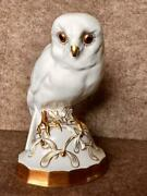 1928-1935 Germany Porcelain Hutschenreuther Surprised Owl Collectible Figurine
