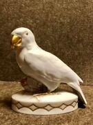 1928-193 Original Rare Germany Statue Of Porcelain Hutschenreuther Parrot Marked