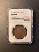 South Africa Paul Kruger Bronze Penny 1898 Gem Uncirculated Much Red Ngc Ms64 Rb