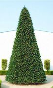 Northlight 12and039 Pre-lit Green Slim Pine Artificial Christmas Tree - Clear Lights