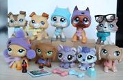 10lot Husky Lps Collie Shorthair Cat Figure Collection With Lps Accessories Rare