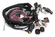 Holley 558-116 Hemi Main Harness Late W/throttle Position Sensor And Idle Air Co