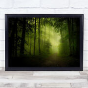 Spring Secret Green Forest Trees Foliage Woods Path Road Way Wall Art Print