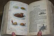 1866 Book Of Household Management By Mrs Beeton 10 Colour Plates Cookery Beetons