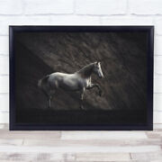 Solitaire Horses Equine Darkness Animals White Statue Horse Pose Wall Art Print