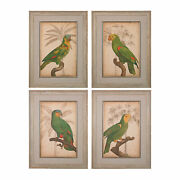Sterling Parrot And Palm Fine Wall Art 151-018/s4