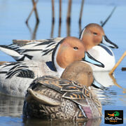 Avery Outdoors Ghg Pro Grade Xd Series Pintail Duck Decoys Harvester 6 Pack