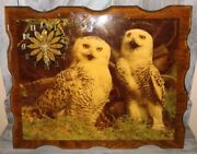 Vintage White Owl Wood Clock Rare Works Great For Collector