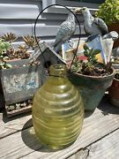 Vintage Bee Hive Style Fly, Wasp, Insect Catcher / Trap - Glass