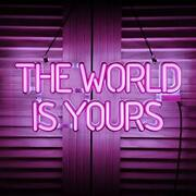 The World Is Yours Led Neon Signs Art Wall Lights For Beer Bar Club Bedroom Wind