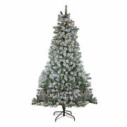 Northlight 6.5and039 X 51 Flocked Winema Pine Artificial Christmas Tree Clear Lights