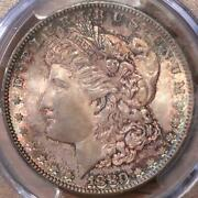 1880-s Morgan 1 Pcgs Ms66 Toned Gem Mother-of-pearl Fields Mikesartifacts