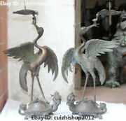 17 Pure Bronze Dragon Tortoise Turtle Red-crowned Crane Candlestick Chart Pair
