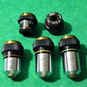 Olympus Stereo Microscope Bh-2 Objective Lens Set Of 5 From Japan F/s