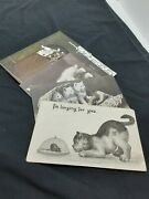 Lot Of 4 Antique Vintage Cat Postcards Early 1900's