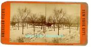New York City Nyc -north End Of The Mall In Winter-central Park- Stereoview