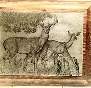 Nature Etching's Iminac, Inc Buck And Grazing Deer By Charles Beckendorf