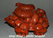 7.8 Old China Natural Red Xiu Jade Carving Animal Tortoise Turtle Snake Statue