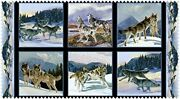 Wild Run Fabric Panel Wolves Snow Scene Quilt Shop Quality Cotton Oop From 2013