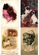 Dogs, Lot Of 48 Old Postcards