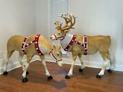 ‼️sold Out‼️home Accent Set Pair Led Reindeer Buck And Doe Home Depot Christmas