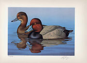 Florida 10 1988 State Duck Stamp Print Redheads By Ronald Louque