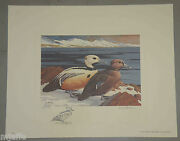 Rw40 1973 Federal Duck Stamp Print Steller's Eider By Leblanc Perfect Condition