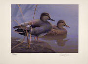 Texas 16 1996 State Duck Stamp Print Gadwall By Daniel Smith 2 Stamps