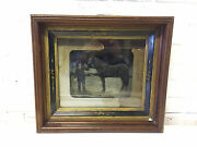 Antique Silver Gelatin Tintype Photo Photograph Of Man And Horse