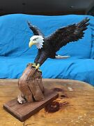 Hand Carved Bass Wood Eagle With Wood Burned Feather Perched Atop Cyprus Branch