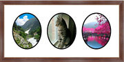 Traditional Mahogany Collage Wall Picture Frame 3 Opening Photo Frames By Mail