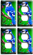 Blue Jay North American Bird Tree 1 Light Switch 3 Outlet Wall Plates Room Decor