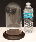 Antique Vintage Round Glass Display Dome Cloche Clock Taxidermy Cover Wood Base