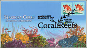 19-068, 2019, Coral Reefs, Pictorial Postmark, Fdc, Staghorn Coral