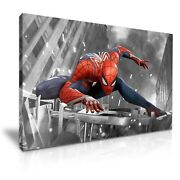 Spiderman Stretched Canvas More Size