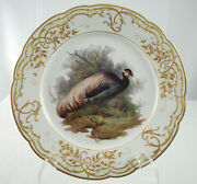 Kpm Finest 9 3/4 Plate, Large Feather Plume Bird, Incredible Detail And Quality