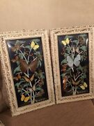 Victorian Butterfly Pictures X2 In Convex Domed Glass