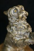 Yorkie, Yorkshire Terrier, 19th Century Incredibly Well Detailed Bronze Ring Box